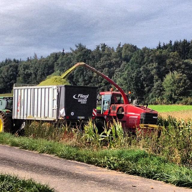 Instagram-Photo: Heute wird überall Mais gehäckselt. #hallertau #obereulenbach