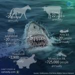 Infografik_haie