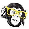 chimpcase_logo_image