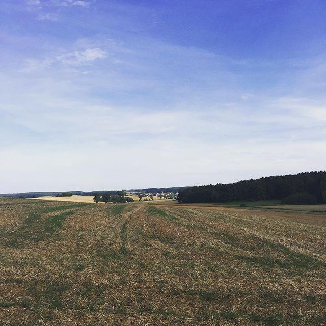 Heute kleine Radltour gemacht im Hintergrund #Laaberberg.