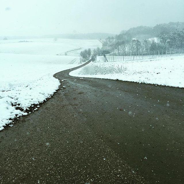 Winterfoto Nr. 3