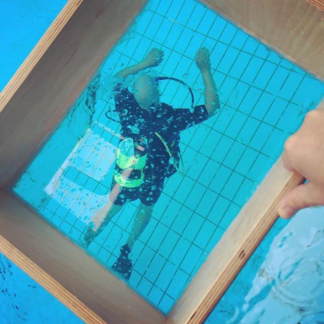 24h-Schwimmen 2016