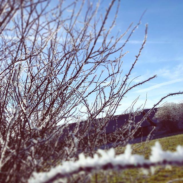 Winter-Spaziergang Teil 3
