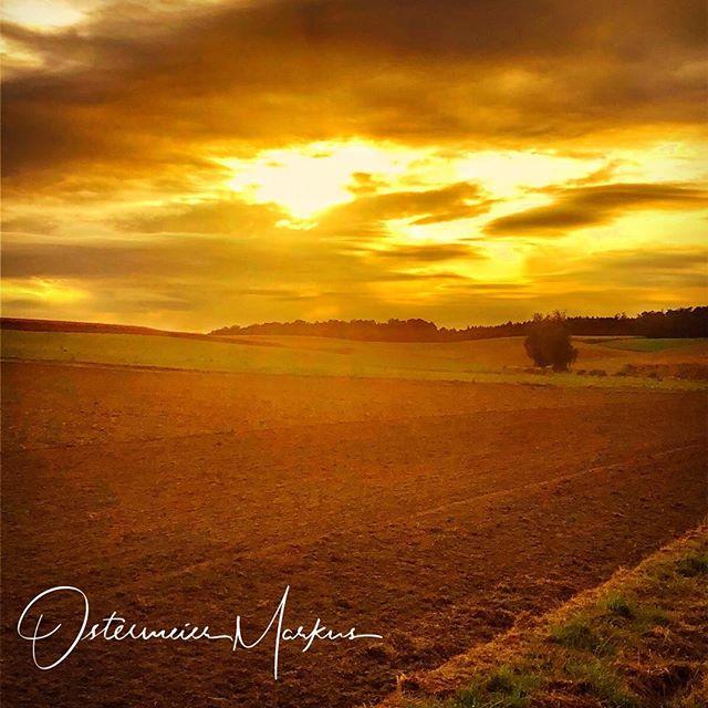 Sonnenuntergang in der Hallertau